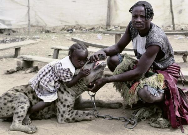 dresseur de hyènes